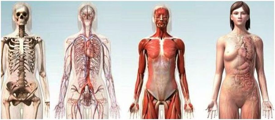 Osteomas osteopatia alcobendas lucas llamas efectos caminar chanclas pies